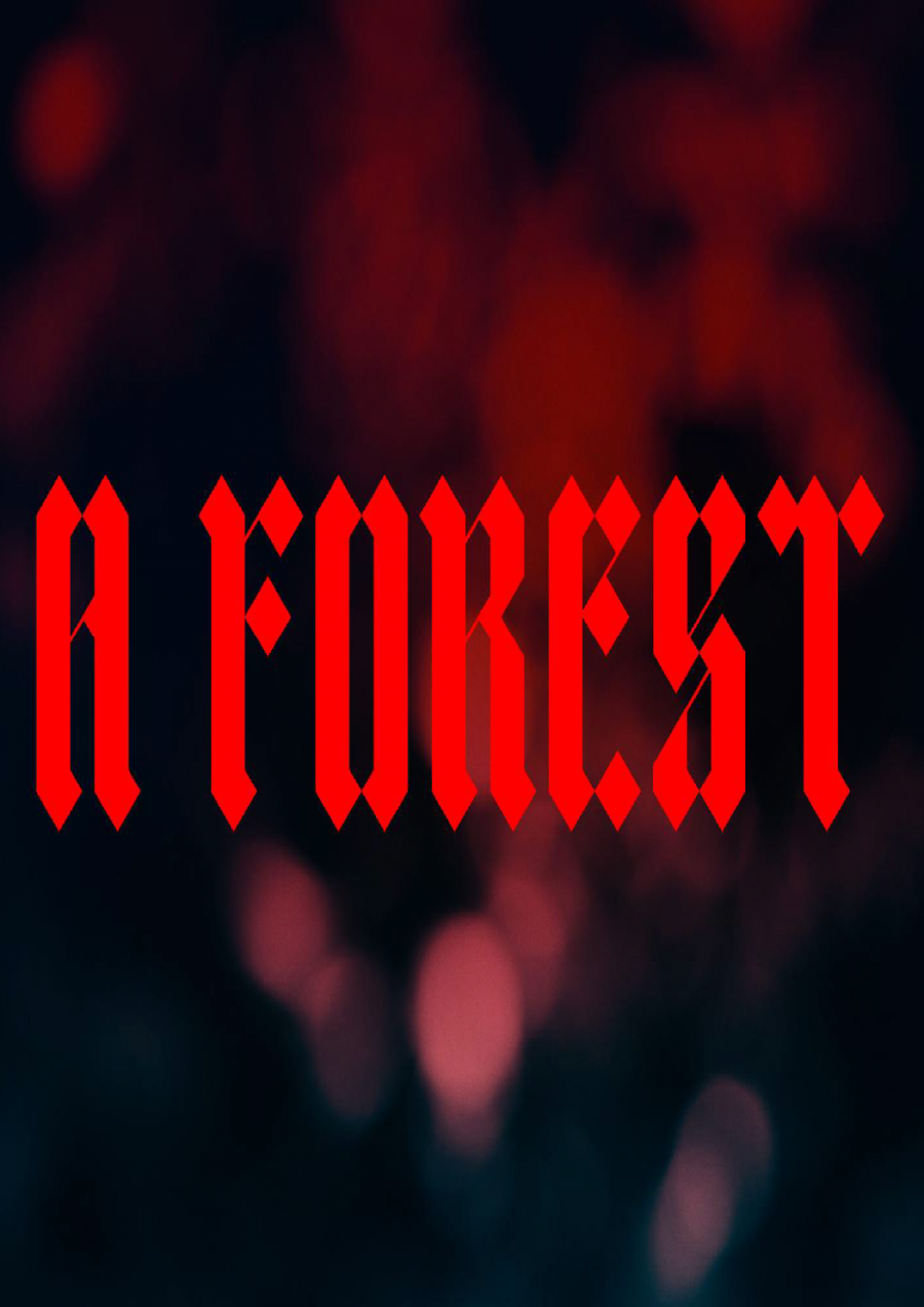 A Forest | Dark Mofo 2019 at Melville Street