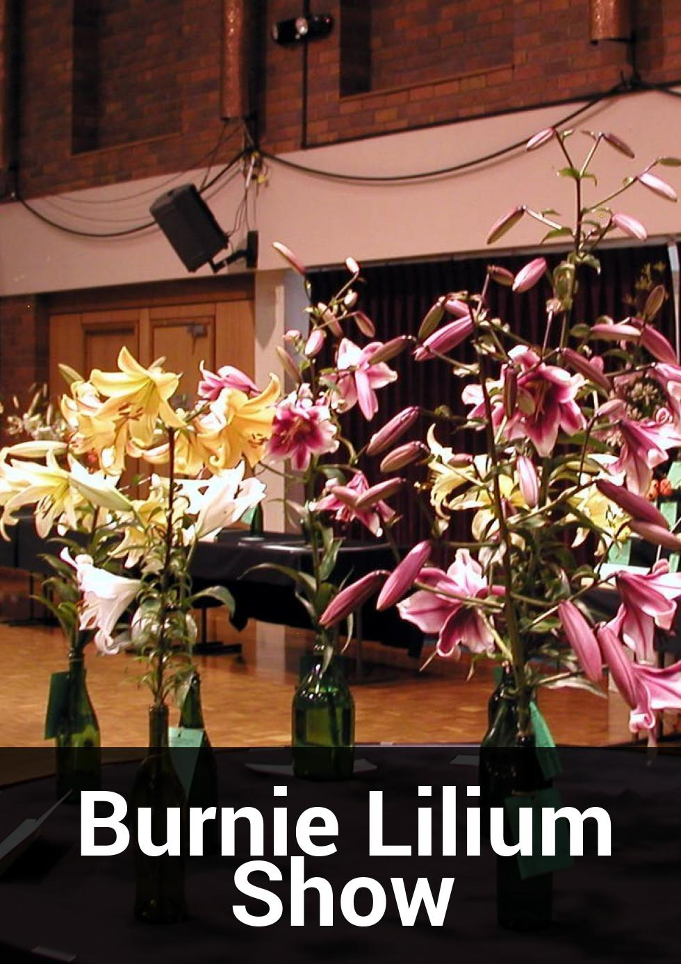 Burnie Lilium Show at Burnie Arts and Function Centre